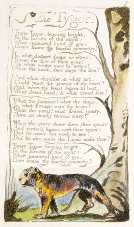 """The Tyger"" (1794) by Willliam Blake from Songs of Experience"