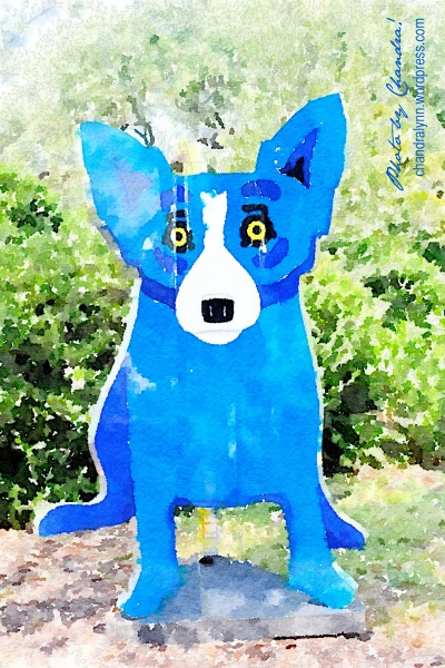 Blue Dog Sculpture @ Besthoff Sculpture Garden at New Orleans City Park