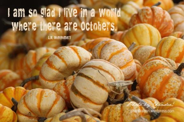 """""""October Pumpkins,"""" Tate Farms, Meridian, Alabama"""