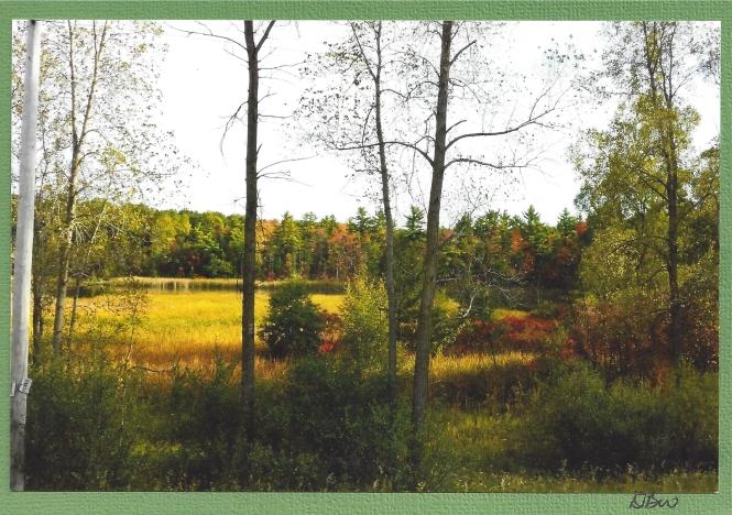 "Autumn Scene by Diane, ""Midteacher"" on swap-bot"
