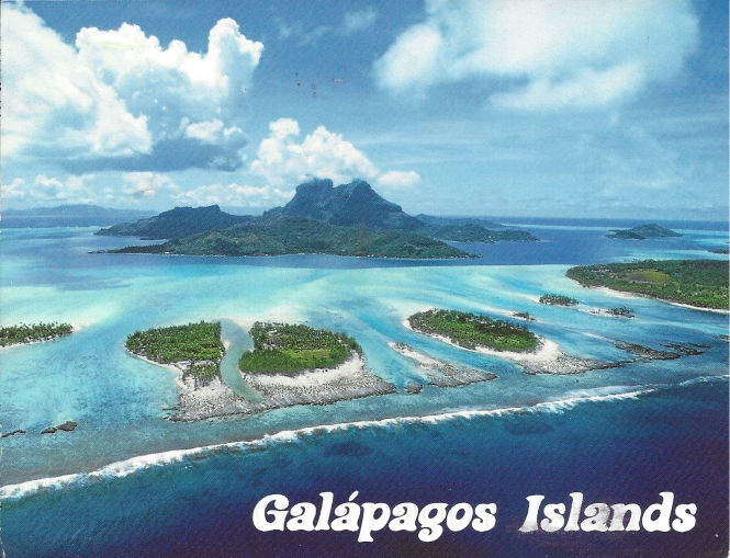 """Galapagos Islands: Situated in the Pacific Ocean, some 1000 km from the Soth American Continent, these 19 isalnds and the surrounding marine reserve have been called a unique """"living museum and showcase of evotion."""" Located a the confluence of trhee ocean currents, the Galapagos are a """"melting pot"""" of marine species. UNESCO World Heritage Site."""