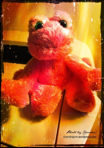 """""""Living the Pink Life,"""" Cy's Frog"""