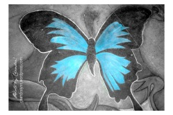 """Butterfly Street Art in NYC,"" Original Photo 2011 (Artwork by HaniSidewalkArt.com"