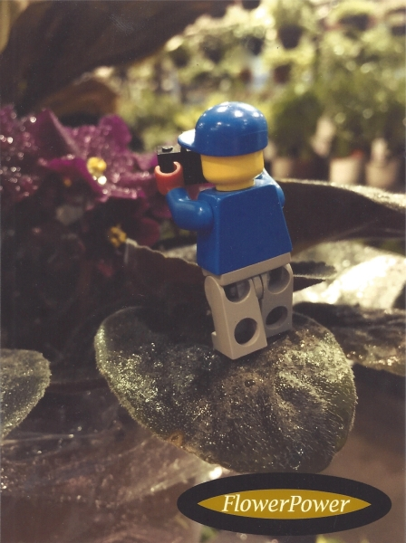 Lego Man Propped on a Leaf by Zoey