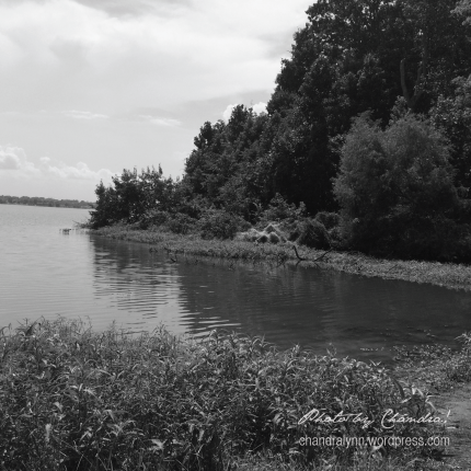 Wheeler Lake in Black and White