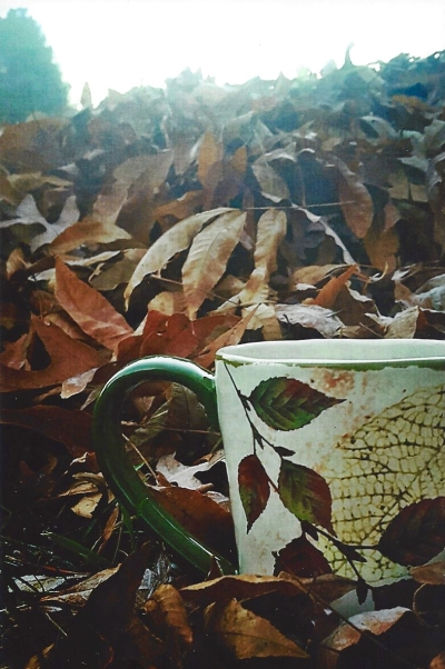 """Leaves and Tea,"" Photo by DBW/Diane aka Midteacher (swap-bot)"