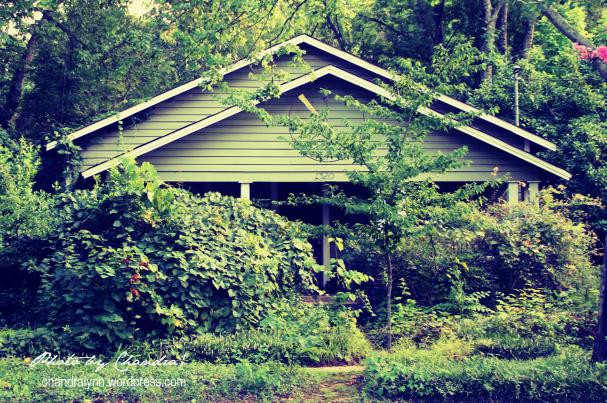 """""""Abandoned's Neighbor"""""""