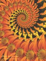 Autumn Flower: Nautilus