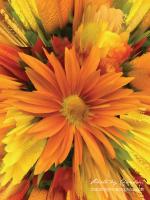 Autumn Flower: Ray 1