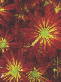 Autumn Flower: Van Gogh