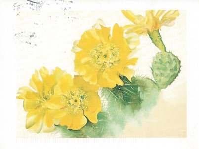 """Yellow Cactus,""1940. Artist Georgia O'Keefe. From Rhonda"