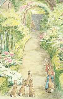 "From Gina B--From The Tale of the Flopsy Bunnies, 1909. ""The Flopsy Bunnies watch Mr. McGregor carry off the sack that he thinks contains them. ""The Flpsy Bunnies followed at a safe distance."""