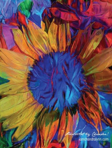 Sunflower PhotoArt