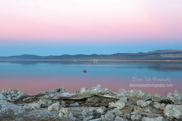 Dennis Mono Lake