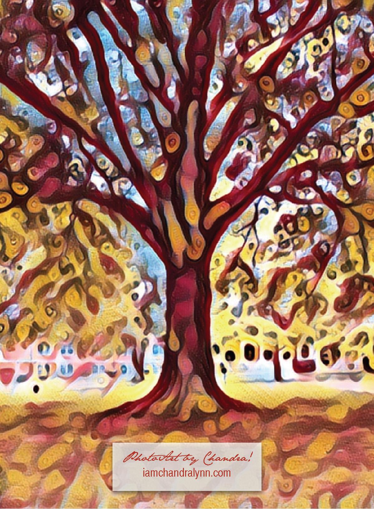 Tree Pic1